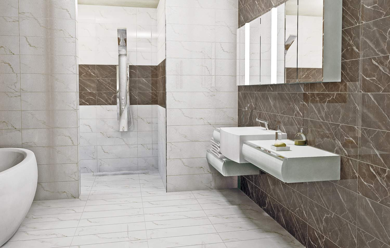 Carrara 60x20 Image